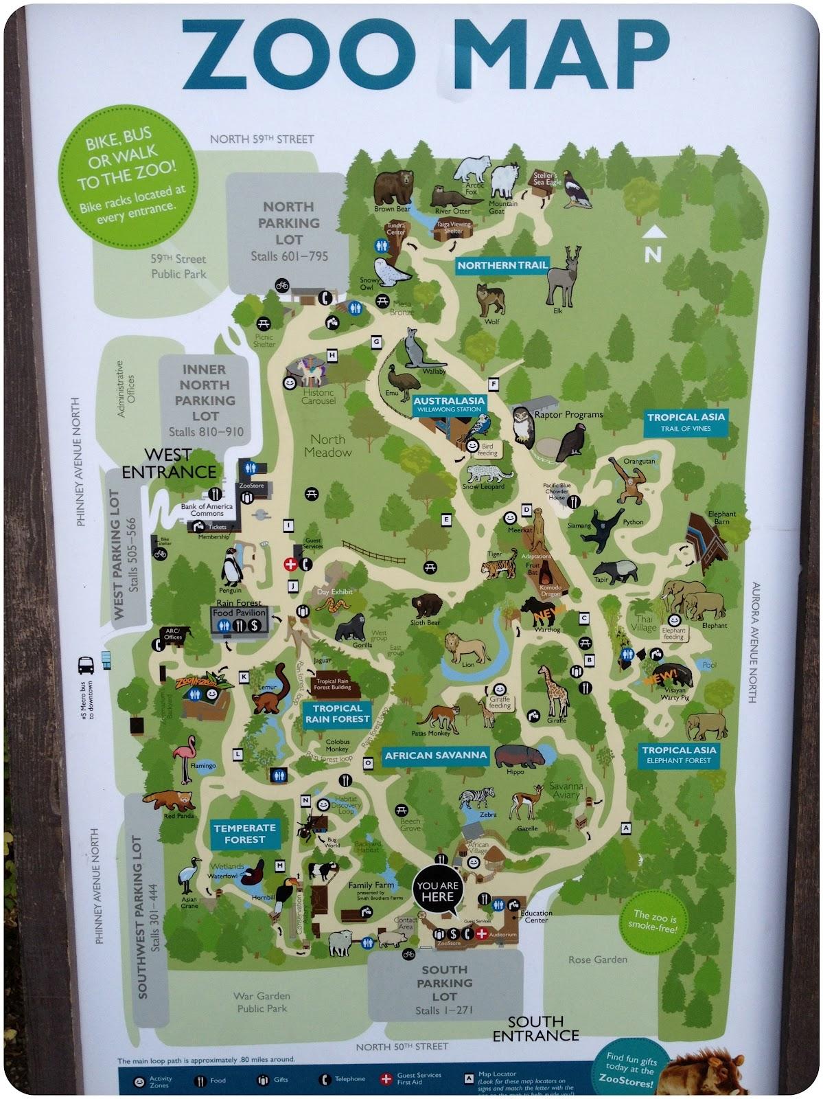 Seattle Woodland Park Zoo   Kelsey Bang