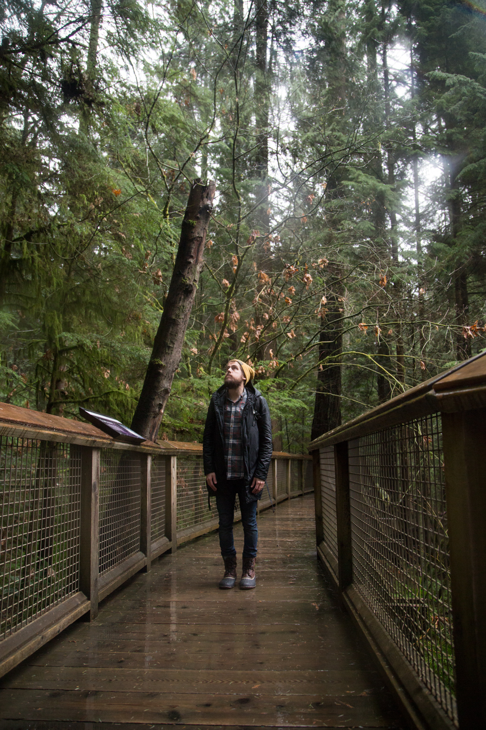 Capilano Suspension Bridge Park in Vancouver Canada + Vlog