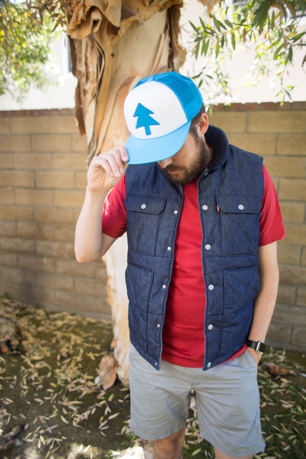 Dipper Pines From Gravity Falls Disney Bounding Outfit