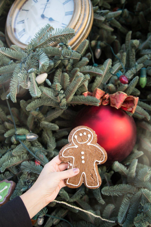 disneyland-at-christmas-time-12