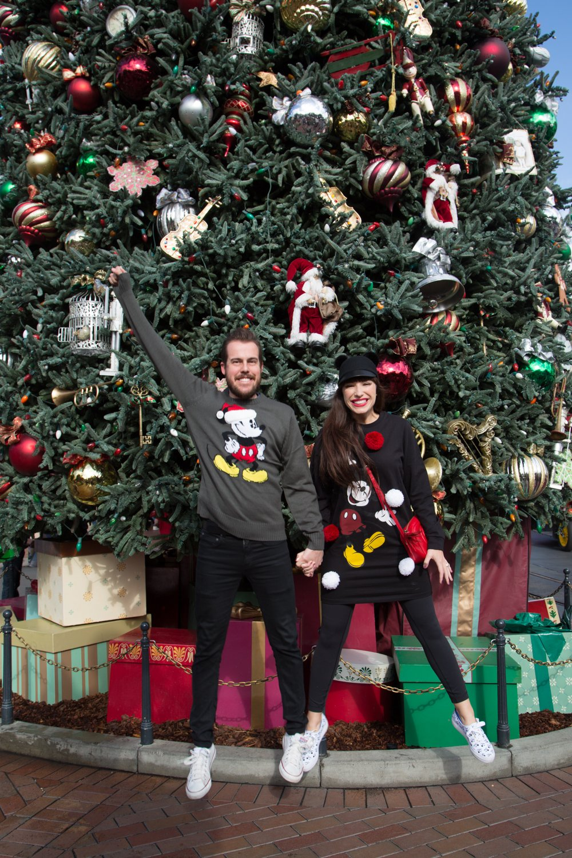 disneyland-at-christmas-time-3