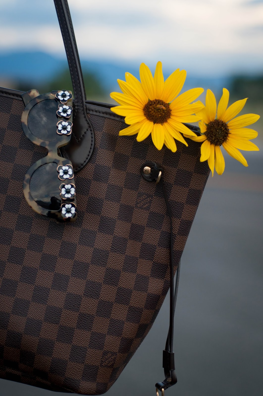 prada, prada sunglasses, prada 2013 flower sunglasses, louis vuitton damier, louis vuitton handbag, wildflowers