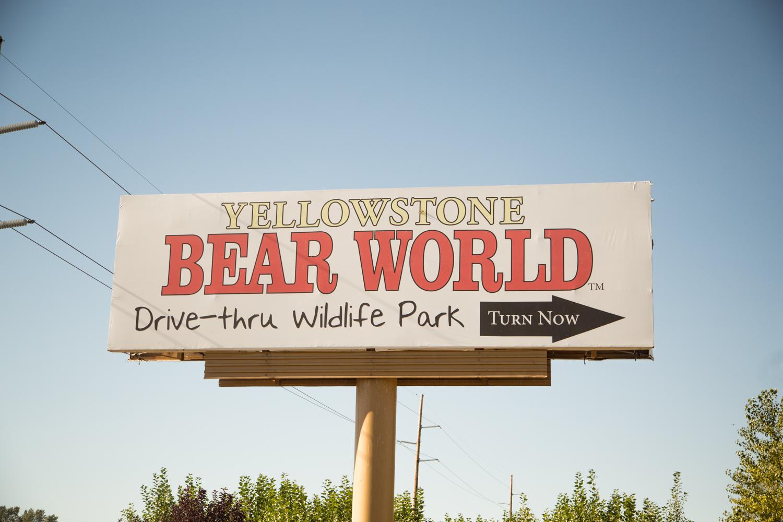 Yellowstone Bear World Review