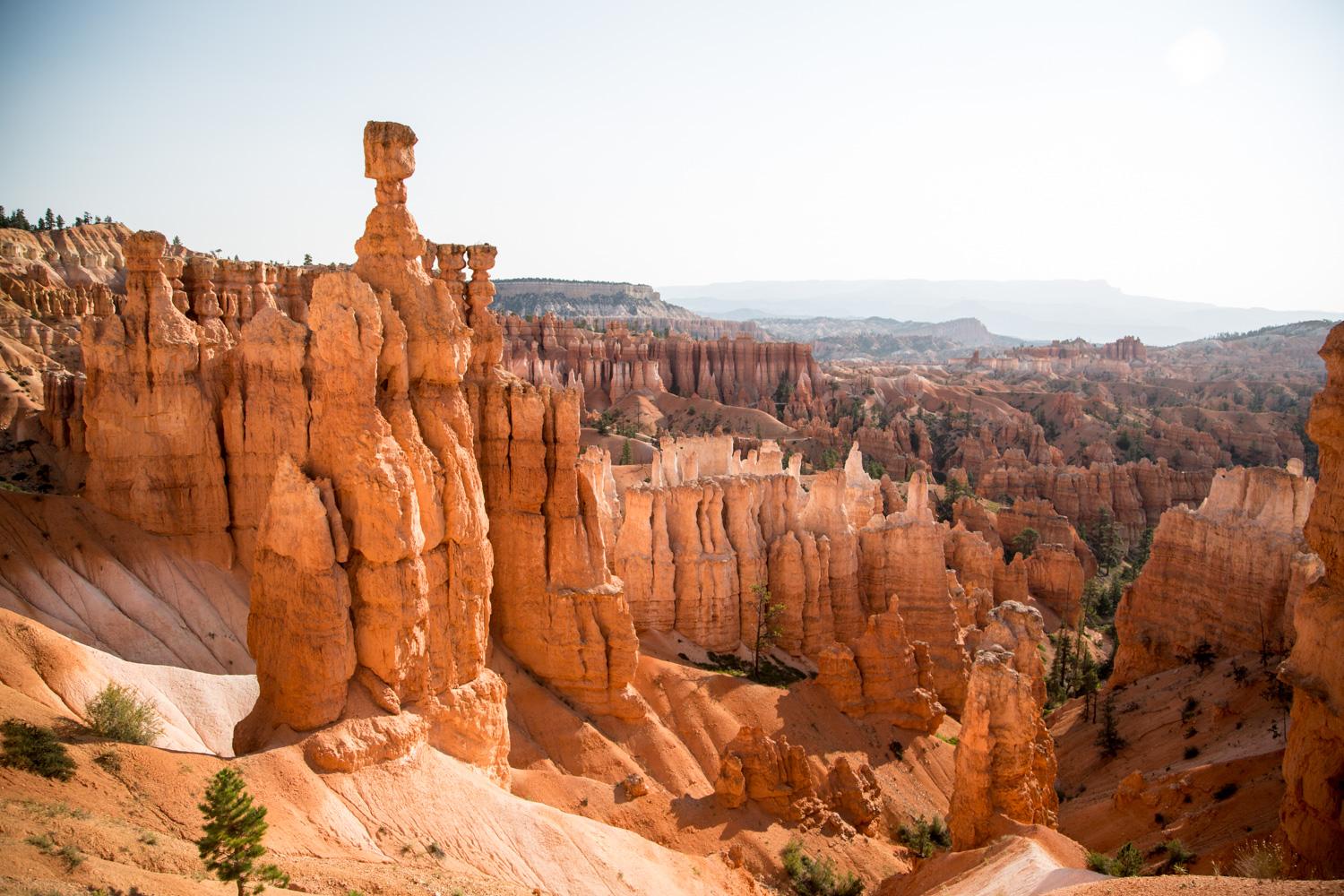 Bryce Canyon Utah Photography