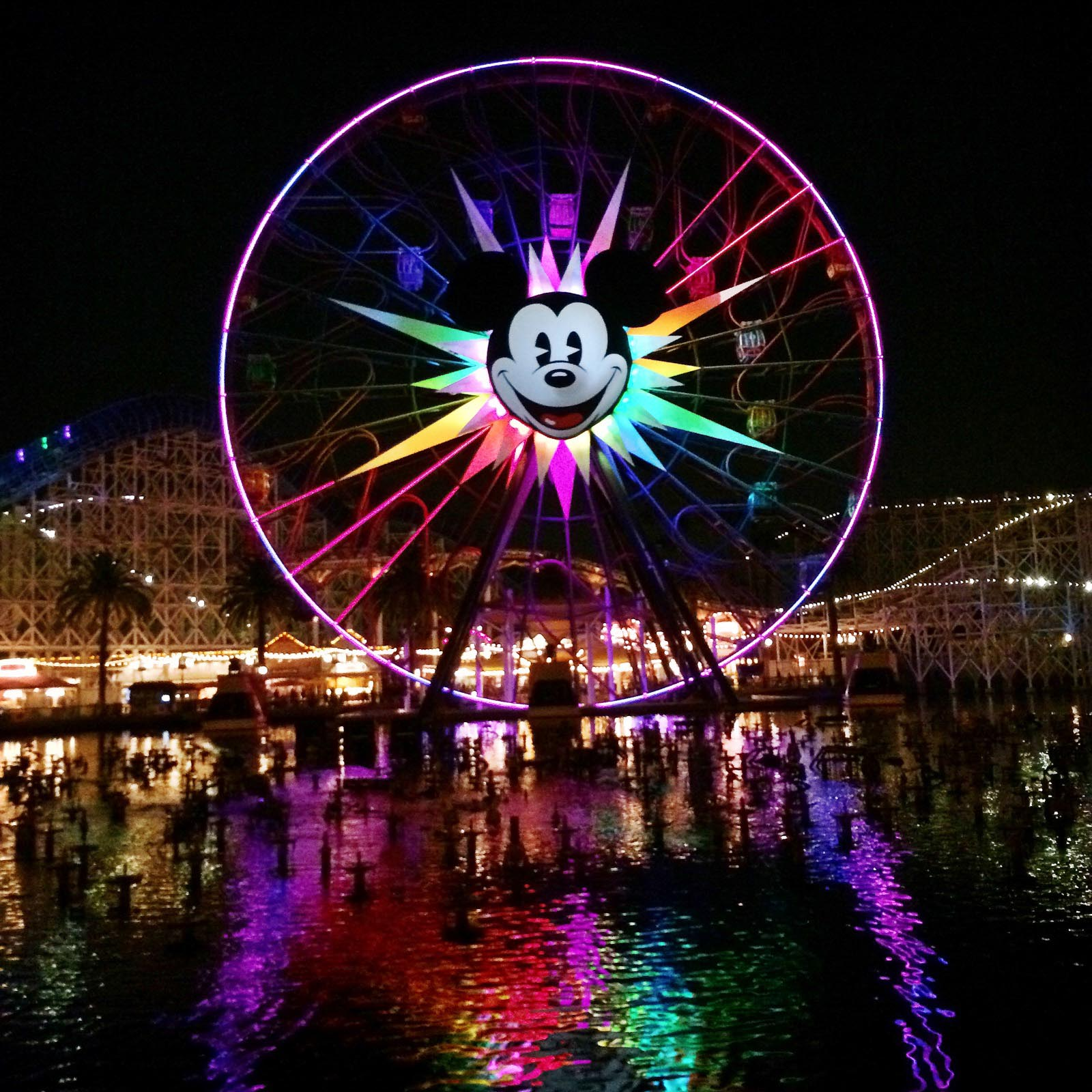 Disneyland's California Adventure Mickeys Fun Wheel at Nightime