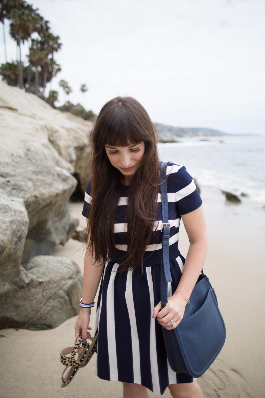 Eliza J Dresses Navy Stripe Cotton Fit and Flare Dress