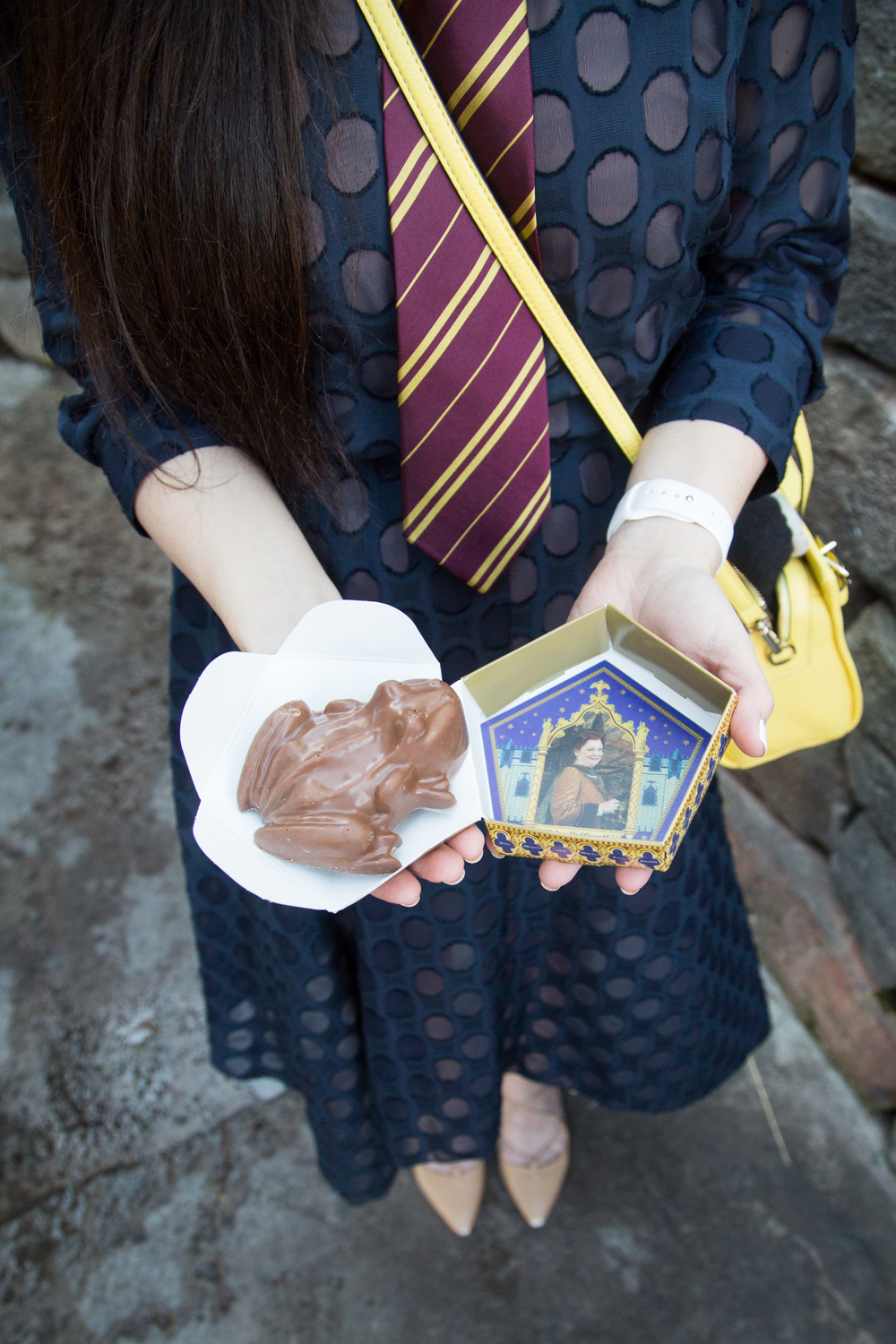 Universal Studios Orlando Wizarding World of Harry Potter Chocolate Frog