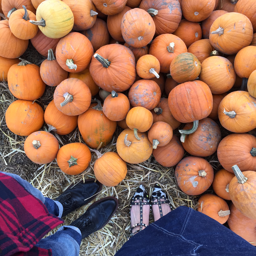 Fall Date Night Idea: Pumpkin Picking