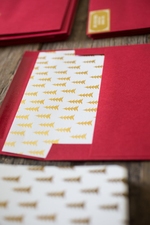 Christmas Card Ideas with TinyPrints